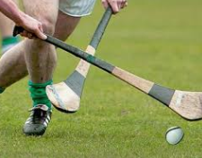 Juvenile Hurlers Just Pipped