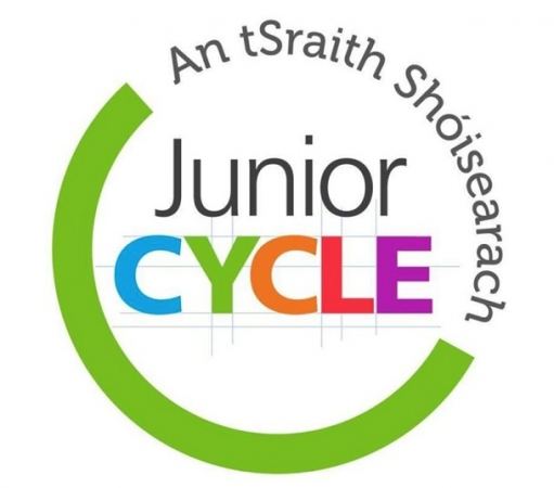 Junior cycle assessment and report 2020